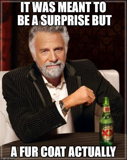 The Most Interesting Man In The World Meme | IT WAS MEANT TO BE A SURPRISE BUT A FUR COAT ACTUALLY | image tagged in memes,the most interesting man in the world | made w/ Imgflip meme maker