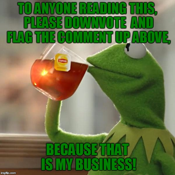 But Thats None Of My Business Meme | TO ANYONE READING THIS, PLEASE DOWNVOTE  AND FLAG THE COMMENT UP ABOVE, BECAUSE THAT IS MY BUSINESS! | image tagged in memes,but thats none of my business,kermit the frog | made w/ Imgflip meme maker