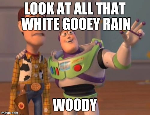 X, X Everywhere Meme | LOOK AT ALL THAT WHITE GOOEY RAIN WOODY | image tagged in memes,x x everywhere | made w/ Imgflip meme maker
