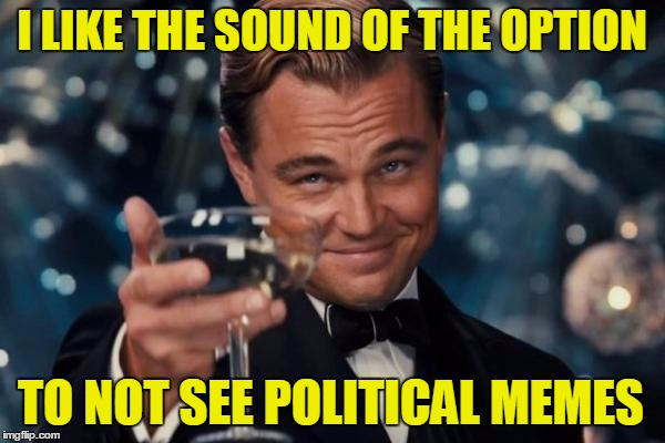 Leonardo Dicaprio Cheers Meme | I LIKE THE SOUND OF THE OPTION TO NOT SEE POLITICAL MEMES | image tagged in memes,leonardo dicaprio cheers | made w/ Imgflip meme maker