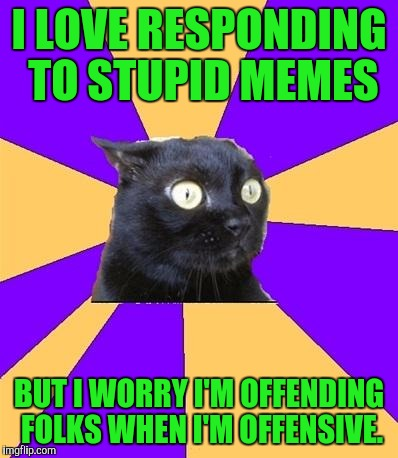 Social Anxiety Cat |  I LOVE RESPONDING TO STUPID MEMES; BUT I WORRY I'M OFFENDING FOLKS WHEN I'M OFFENSIVE. | image tagged in social anxiety cat | made w/ Imgflip meme maker