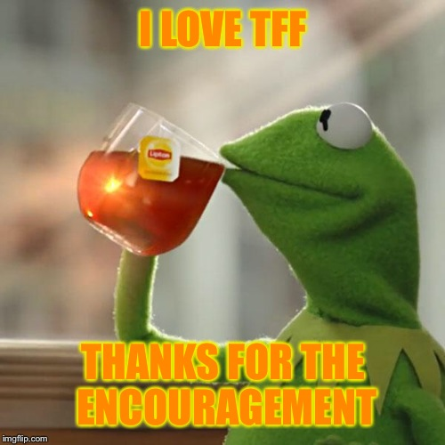 But Thats None Of My Business Meme | I LOVE TFF THANKS FOR THE ENCOURAGEMENT | image tagged in memes,but thats none of my business,kermit the frog | made w/ Imgflip meme maker