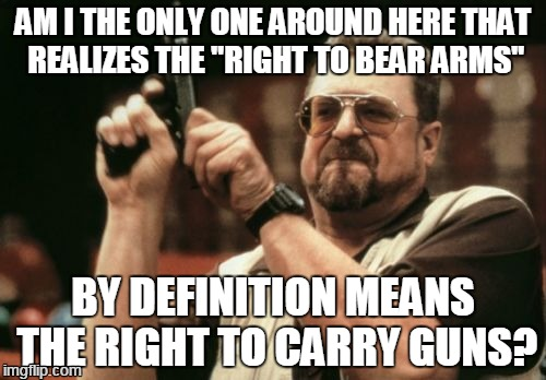"Am I going crazy? I don't like guns, and even I understand this basic idea... | AM I THE ONLY ONE AROUND HERE THAT REALIZES THE ""RIGHT TO BEAR ARMS"" BY DEFINITION MEANS THE RIGHT TO CARRY GUNS? 