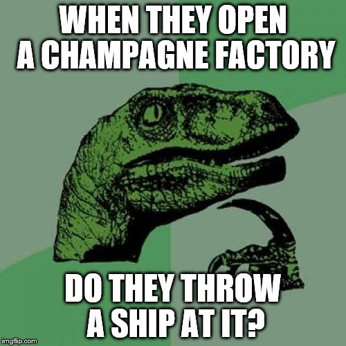 I name this factory... | WHEN THEY OPEN A CHAMPAGNE FACTORY DO THEY THROW A SHIP AT IT? | image tagged in memes,philosoraptor,champagne,ship | made w/ Imgflip meme maker