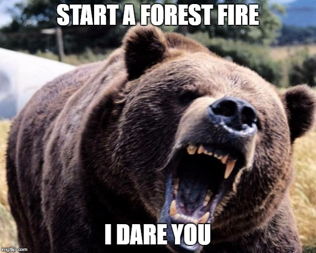 Smokey the Bear don't play | START A FOREST FIRE I DARE YOU | image tagged in smokey the bear,bear,fire,forest fire,i dare you | made w/ Imgflip meme maker