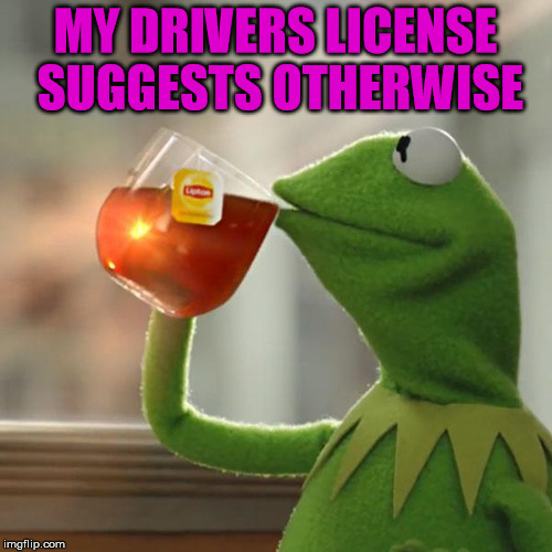 But Thats None Of My Business Meme | MY DRIVERS LICENSE SUGGESTS OTHERWISE | image tagged in memes,but thats none of my business,kermit the frog | made w/ Imgflip meme maker