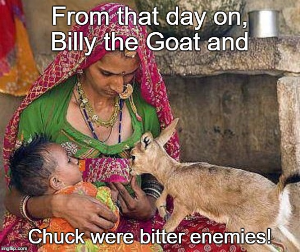 From that day on, Billy the Goat and Chuck were bitter enemies! | made w/ Imgflip meme maker