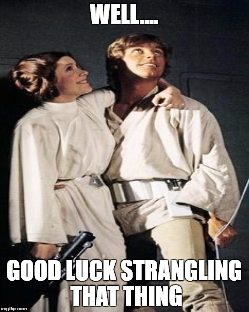 WELL.... GOOD LUCK STRANGLING THAT THING | made w/ Imgflip meme maker