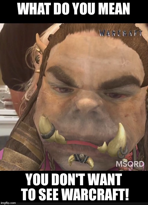 What do you mean you don't want tot see Warcraft!?! | WHAT DO YOU MEAN YOU DON'T WANT TO SEE WARCRAFT! | image tagged in world of warcraft | made w/ Imgflip meme maker