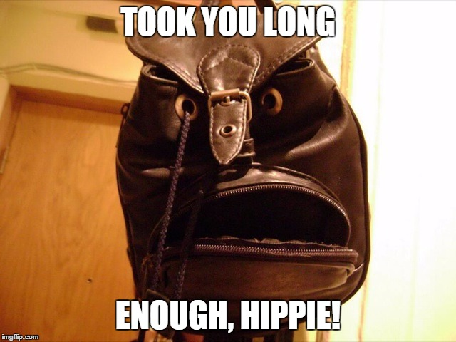 What Are You Looking At | TOOK YOU LONG ENOUGH, HIPPIE! | image tagged in what are you looking at | made w/ Imgflip meme maker