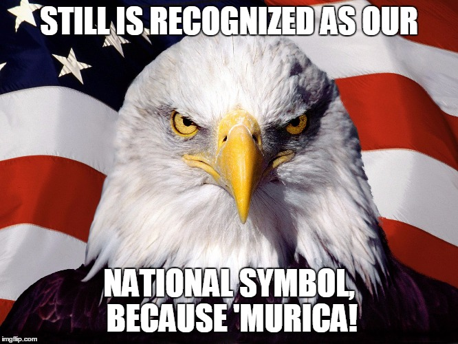 STILL IS RECOGNIZED AS OUR NATIONAL SYMBOL, BECAUSE 'MURICA! | made w/ Imgflip meme maker