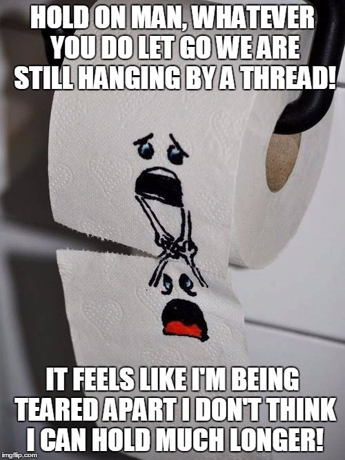 The Most Dramatic Two Piece Of Toilet Paper I Have Ever Seen! | HOLD ON MAN, WHATEVER YOU DO LET GO WE ARE STILL HANGING BY A THREAD! IT FEELS LIKE I'M BEING TEARED APART I DON'T THINK I CAN HOLD MUCH LON | image tagged in memes,funny,toilet paper,dramatic,hold on,toilet humor | made w/ Imgflip meme maker