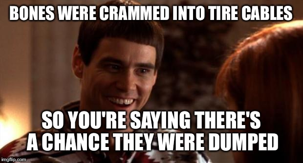 So you're saying there's a chance | BONES WERE CRAMMED INTO TIRE CABLES SO YOU'RE SAYING THERE'S A CHANCE THEY WERE DUMPED | image tagged in so you're saying there's a chance | made w/ Imgflip meme maker