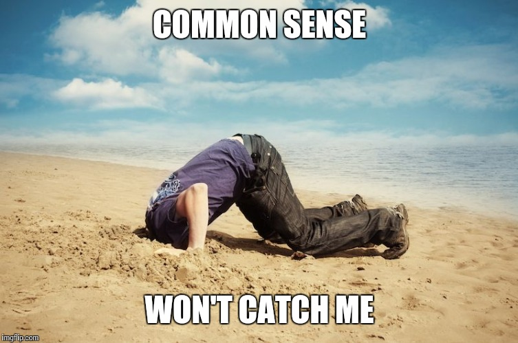 COMMON SENSE WON'T CATCH ME | made w/ Imgflip meme maker