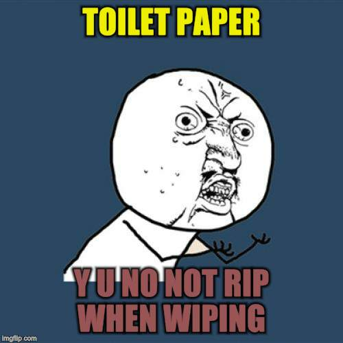 Y U No Meme | TOILET PAPER Y U NO NOT RIP WHEN WIPING | image tagged in memes,y u no | made w/ Imgflip meme maker