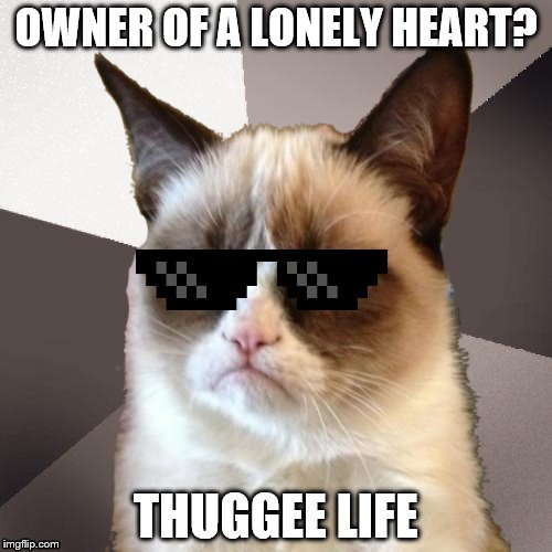 Musically Malicious Grumpy Cat | OWNER OF A LONELY HEART? THUGGEE LIFE | image tagged in musically malicious grumpy cat,thug life,olympianproduct,deal with it | made w/ Imgflip meme maker