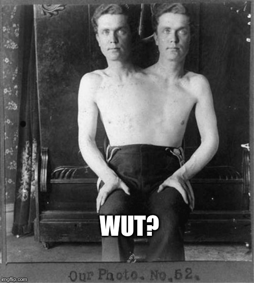 Two headed man | WUT? | image tagged in two headed man | made w/ Imgflip meme maker