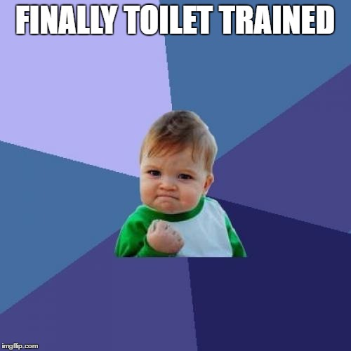 FINALLY TOILET TRAINED | image tagged in memes,success kid | made w/ Imgflip meme maker