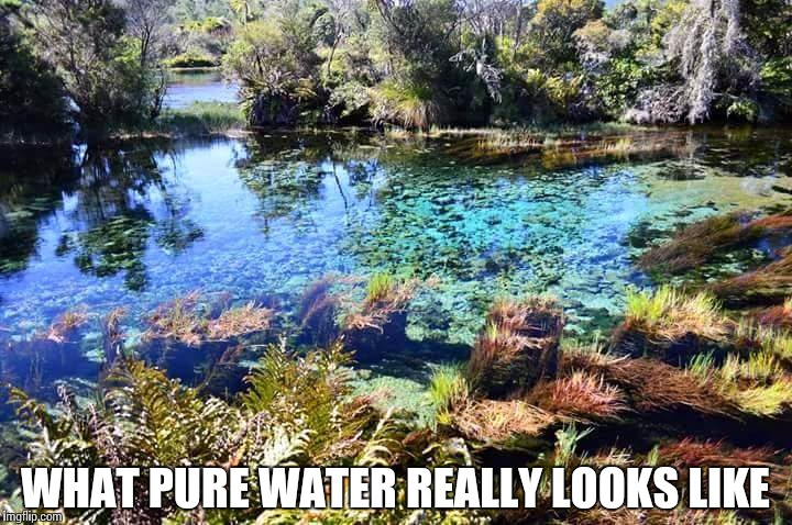 WHAT PURE WATER REALLY LOOKS LIKE | made w/ Imgflip meme maker