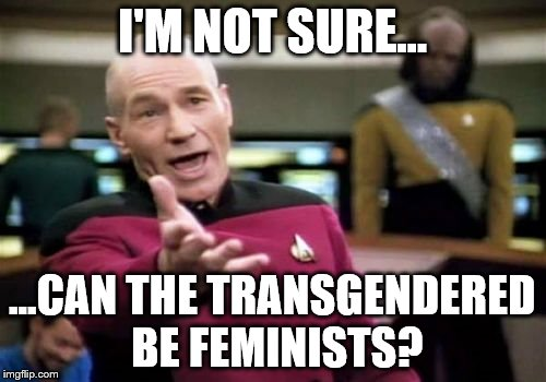 Picard Wtf Meme | I'M NOT SURE... ...CAN THE TRANSGENDERED BE FEMINISTS? | image tagged in memes,picard wtf | made w/ Imgflip meme maker