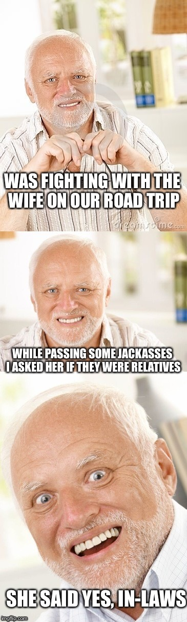 Hide the pun Harold | WAS FIGHTING WITH THE WIFE ON OUR ROAD TRIP WHILE PASSING SOME JACKASSES I ASKED HER IF THEY WERE RELATIVES SHE SAID YES, IN-LAWS | image tagged in hide the pun harold | made w/ Imgflip meme maker