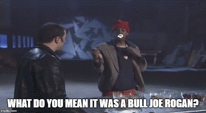WHAT DO YOU MEAN IT WAS A BULL JOE ROGAN? | made w/ Imgflip meme maker