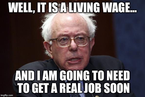 WELL, IT IS A LIVING WAGE... AND I AM GOING TO NEED TO GET A REAL JOB SOON | made w/ Imgflip meme maker