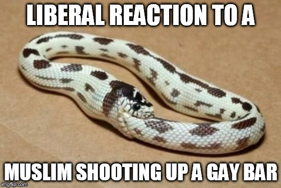 Snake Eating Itself | LIBERAL REACTION TO A MUSLIM SHOOTING UP A GAY BAR | image tagged in snake eating itself | made w/ Imgflip meme maker
