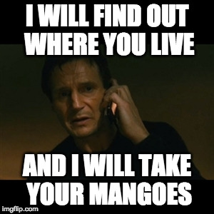 Liam Neeson Taken | I WILL FIND OUT WHERE YOU LIVE AND I WILL TAKE YOUR MANGOES | image tagged in memes,liam neeson taken,mango,mangoseason | made w/ Imgflip meme maker
