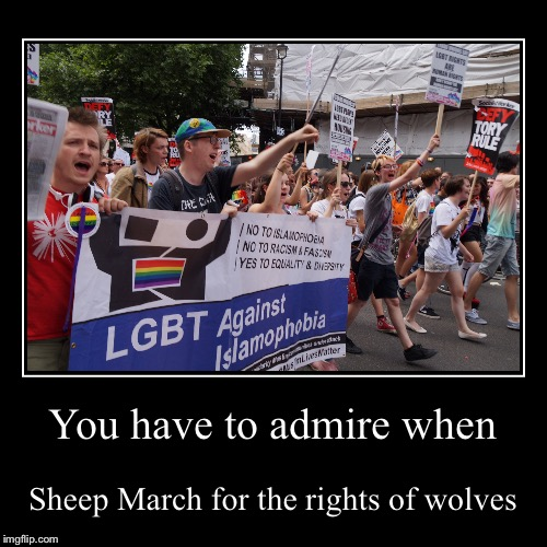 Irony | You have to admire when | Sheep March for the rights of wolves | image tagged in orlando shooting,demotivationals | made w/ Imgflip demotivational maker