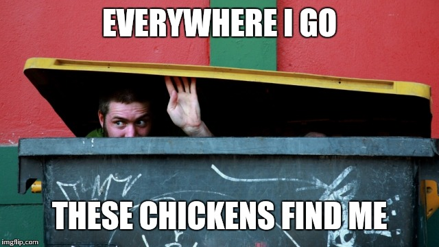 EVERYWHERE I GO THESE CHICKENS FIND ME | made w/ Imgflip meme maker