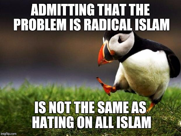 Unpopular Opinion Puffin Meme | ADMITTING THAT THE PROBLEM IS RADICAL ISLAM IS NOT THE SAME AS HATING ON ALL ISLAM | image tagged in memes,unpopular opinion puffin | made w/ Imgflip meme maker