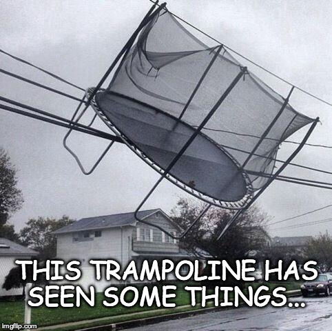 Don't ask. |  THIS TRAMPOLINE HAS SEEN SOME THINGS... | image tagged in trampoline,bacon | made w/ Imgflip meme maker