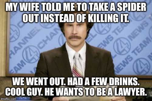 Ron Burgundy Meme | MY WIFE TOLD ME TO TAKE A SPIDER OUT INSTEAD OF KILLING IT. WE WENT OUT. HAD A FEW DRINKS. COOL GUY. HE WANTS TO BE A LAWYER. | image tagged in memes,ron burgundy | made w/ Imgflip meme maker