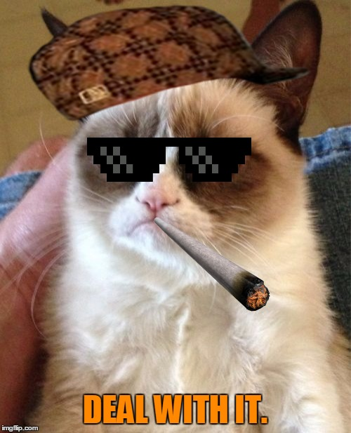 Grumpy Cat Meme | DEAL WITH IT. | image tagged in memes,grumpy cat,scumbag | made w/ Imgflip meme maker