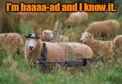 I'm baaaa-ad and I know it. | made w/ Imgflip meme maker