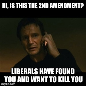 The government wins when we shred the only protection we have against them |  HI, IS THIS THE 2ND AMENDMENT? LIBERALS HAVE FOUND YOU AND WANT TO KILL YOU | image tagged in memes,liam neeson taken,2nd amendment,guns,liberals | made w/ Imgflip meme maker