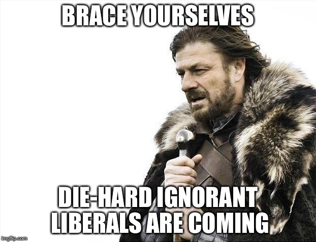 Brace Yourselves X is Coming Meme | BRACE YOURSELVES DIE-HARD IGNORANT LIBERALS ARE COMING | image tagged in memes,brace yourselves x is coming | made w/ Imgflip meme maker