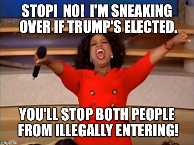 Oprah You Get A Meme | STOP!  NO!  I'M SNEAKING OVER IF TRUMP'S ELECTED. YOU'LL STOP BOTH PEOPLE FROM ILLEGALLY ENTERING! | image tagged in memes,oprah you get a | made w/ Imgflip meme maker