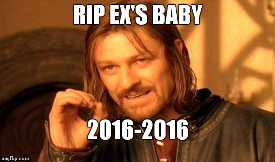 One Does Not Simply Meme | RIP EX'S BABY 2016-2016 | image tagged in memes,one does not simply | made w/ Imgflip meme maker