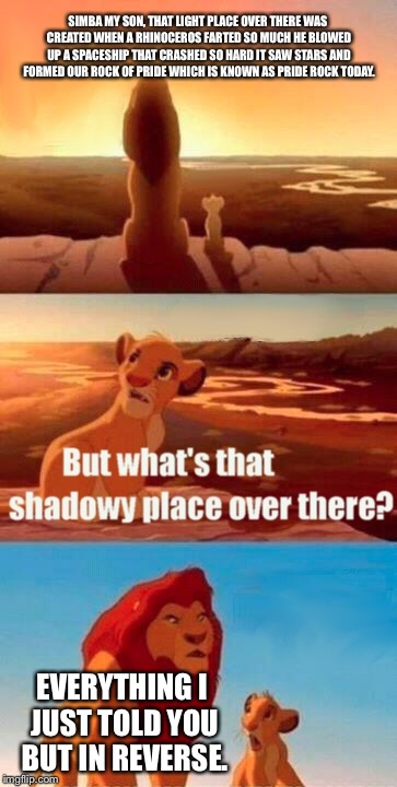 Simba Shadowy Place | SIMBA MY SON, THAT LIGHT PLACE OVER THERE WAS CREATED WHEN A RHINOCEROS FARTED SO MUCH HE BLOWED UP A SPACESHIP THAT CRASHED SO HARD IT SAW  | image tagged in memes,simba shadowy place | made w/ Imgflip meme maker