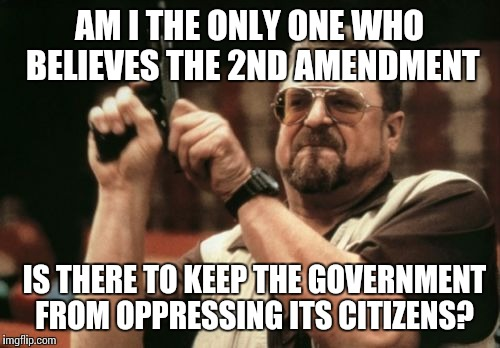 Am I The Only One Around Here Meme | AM I THE ONLY ONE WHO BELIEVES THE 2ND AMENDMENT IS THERE TO KEEP THE GOVERNMENT FROM OPPRESSING ITS CITIZENS? | image tagged in memes,am i the only one around here | made w/ Imgflip meme maker