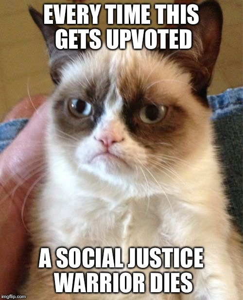 Grumpy Cat Meme | EVERY TIME THIS GETS UPVOTED A SOCIAL JUSTICE WARRIOR DIES | image tagged in memes,grumpy cat | made w/ Imgflip meme maker