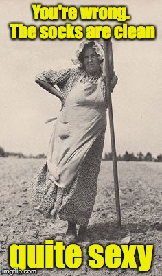 Woman Farmer | You're wrong. The socks are clean quite sexy | image tagged in woman farmer | made w/ Imgflip meme maker