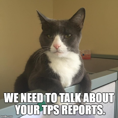 Office Space Cat Imgflip