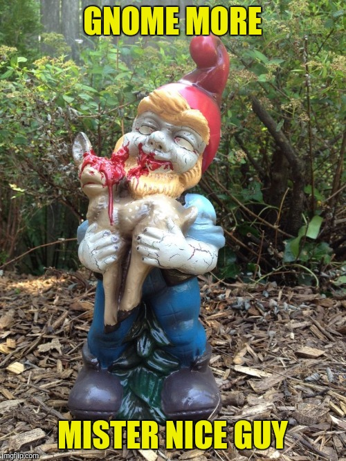 That's the kind of garden I would have |  GNOME MORE; MISTER NICE GUY | image tagged in memes,funny,sewmyeyesshut,gnome | made w/ Imgflip meme maker