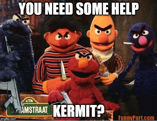 YOU NEED SOME HELP KERMIT? | made w/ Imgflip meme maker