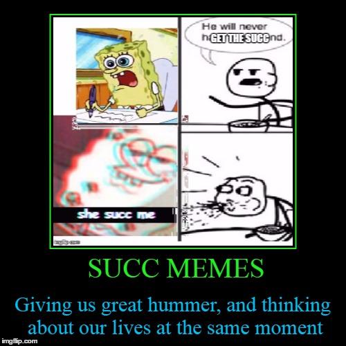 Succ Memes Imgflip