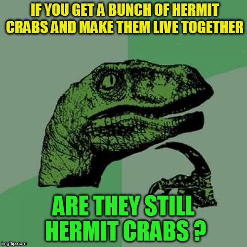 Philosoraptor Meme | IF YOU GET A BUNCH OF HERMIT CRABS AND MAKE THEM LIVE TOGETHER ARE THEY STILL HERMIT CRABS ? | image tagged in memes,philosoraptor,crabs,funny meme,deep thoughts,questions | made w/ Imgflip meme maker