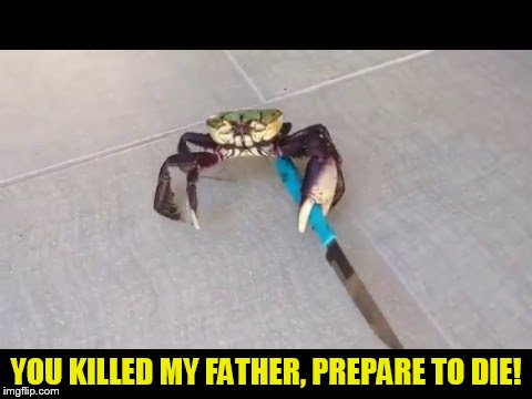 YOU KILLED MY FATHER, PREPARE TO DIE! | made w/ Imgflip meme maker